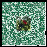 Baumpflege Voß QR-Code